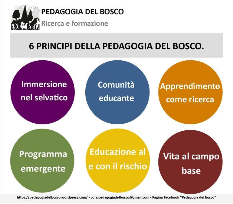 6 principi